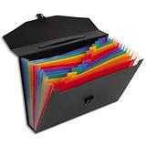 VIQUEL Trieur malette RAINBOW CLASS 13 compartiments, polypro 10/10e, noir intérieur multicolore