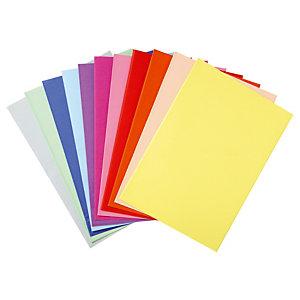 Voordelige 250 ondermappen geassorteerde kleuren